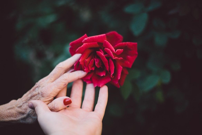mother-daughter-hands
