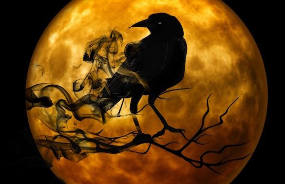 raven-mystical