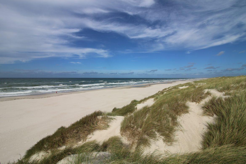 lady-robinsons-beach