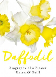 book-cover-of-daffodil
