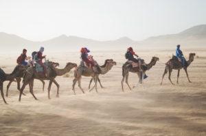 a-camel-train