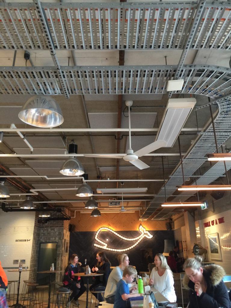 ceiling-pavilion-whale