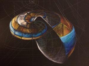 shell-fibonacci