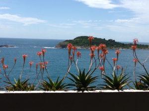 adriatic-sea-cavtat