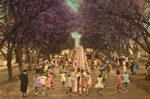 early-jacaranda-festival-maypole