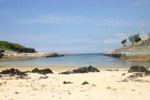 clovelly-bay-sand-seaweed