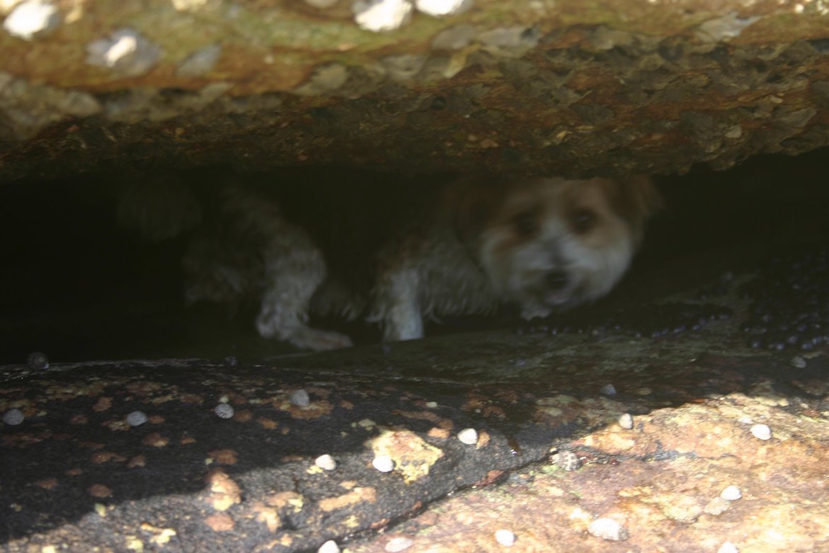zac-in-rock-crevice
