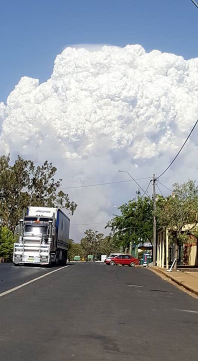 bush-fire-storm-cloud
