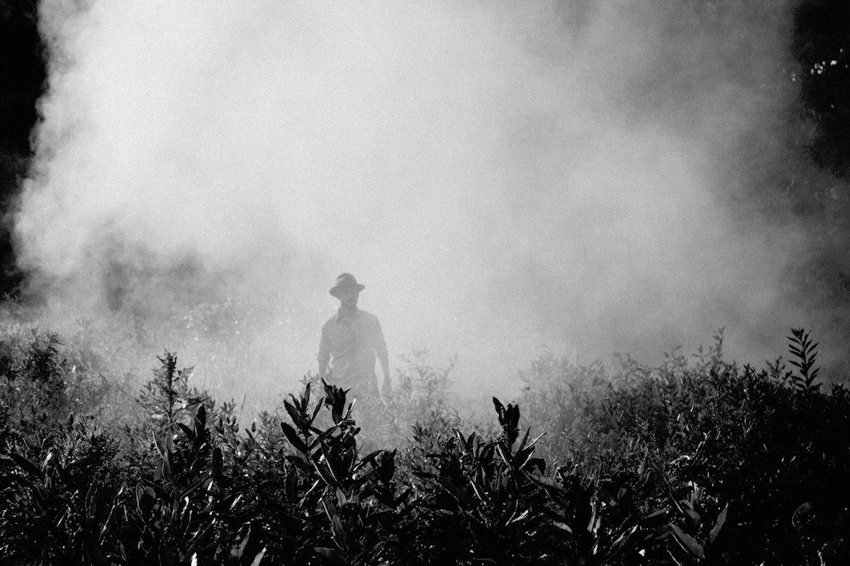 man-bushfire-nature