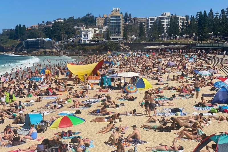 crowded coogee beach